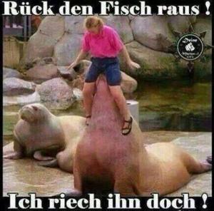 rueck-den-fisch-raus-ich-riech-ihn-doch